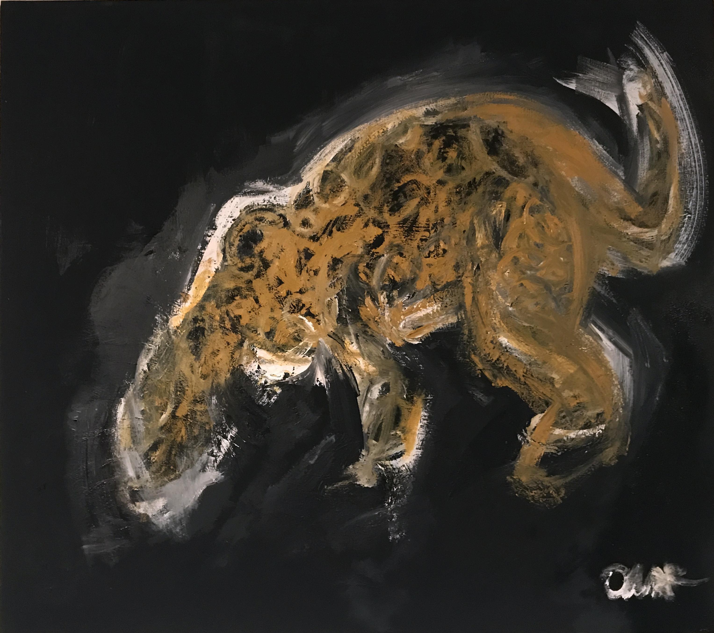 Jaguar, la noche